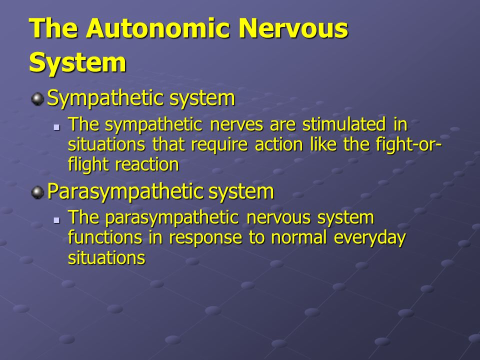 The Autonomic Nervous System Sympathetic system The sympathetic nerves are stimulated in situations that require action like the fight-or- flight reac