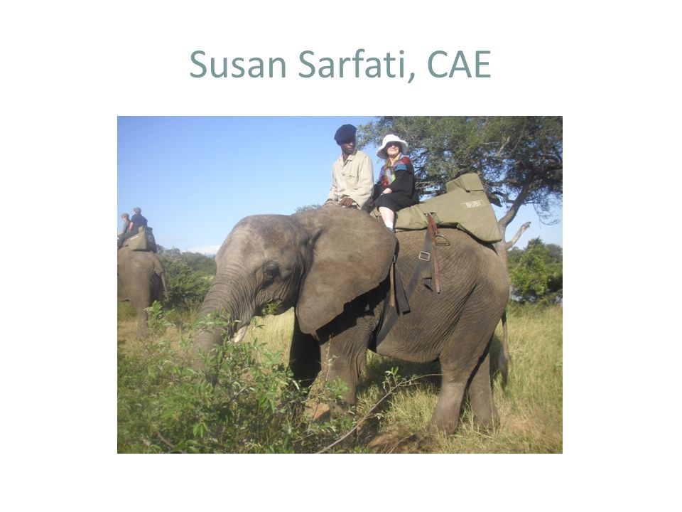 Susan Sarfati, CAE