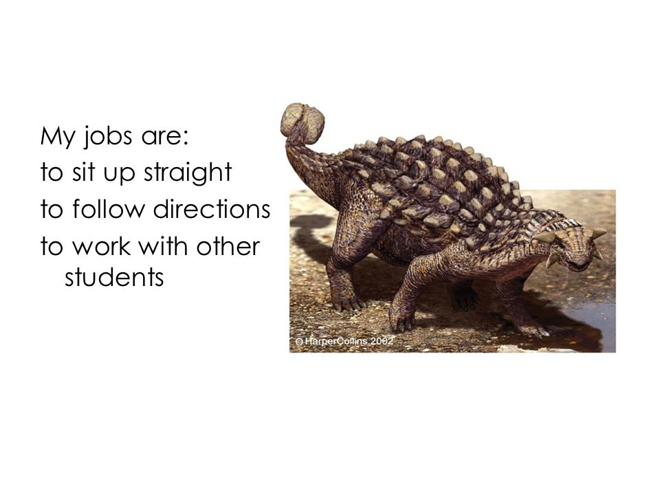 My jobs are: to sit up straight to follow directions to work with other students