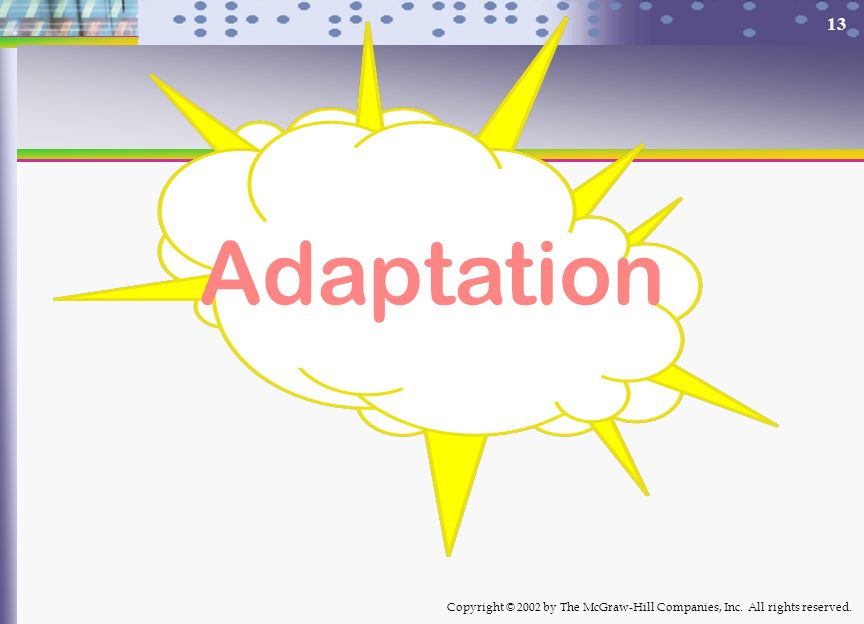 Copyright © 2002 by The McGraw-Hill Companies, Inc. All rights reserved. 13 Adaptation
