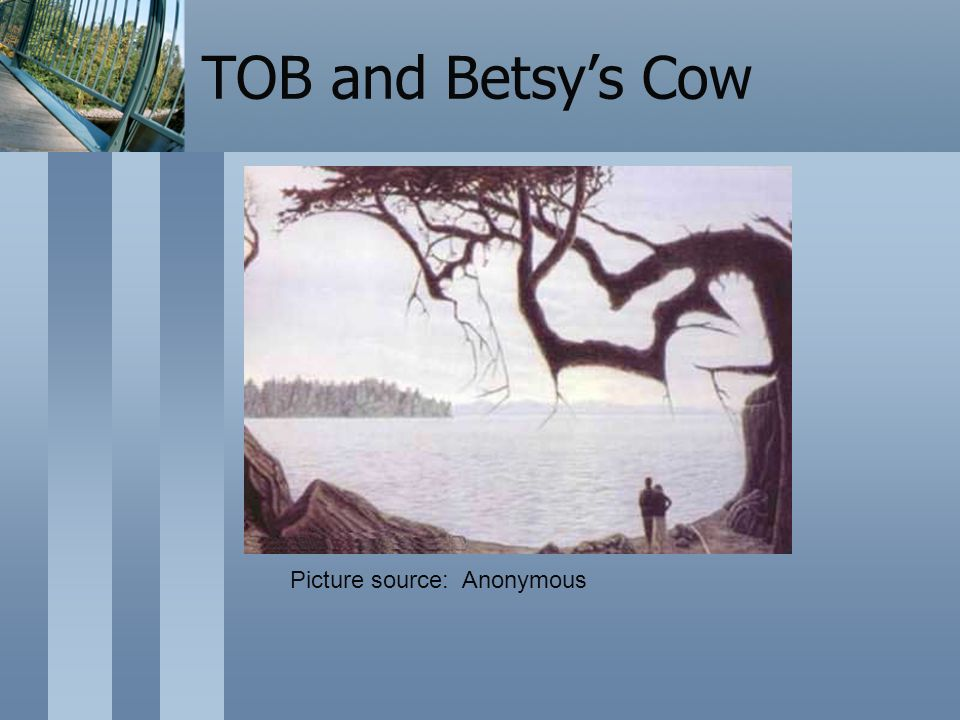 TOB and Betsys Cow Picture source: Anonymous