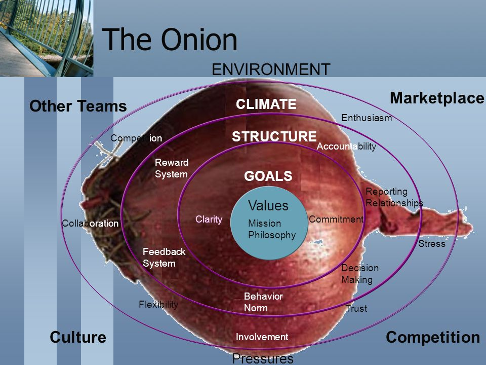 The Onion Values GOALS STRUCTURE CLIMATE ENVIRONMENT Marketplace Other Teams CultureCompetition Pressures ClarityCommitment Reward System Reporting Relationships Feedback System Behavior Norm Decision Making Competition Enthusiasm Stress Trust Involvement Flexibility CollaborationMission Philosophy Accountability