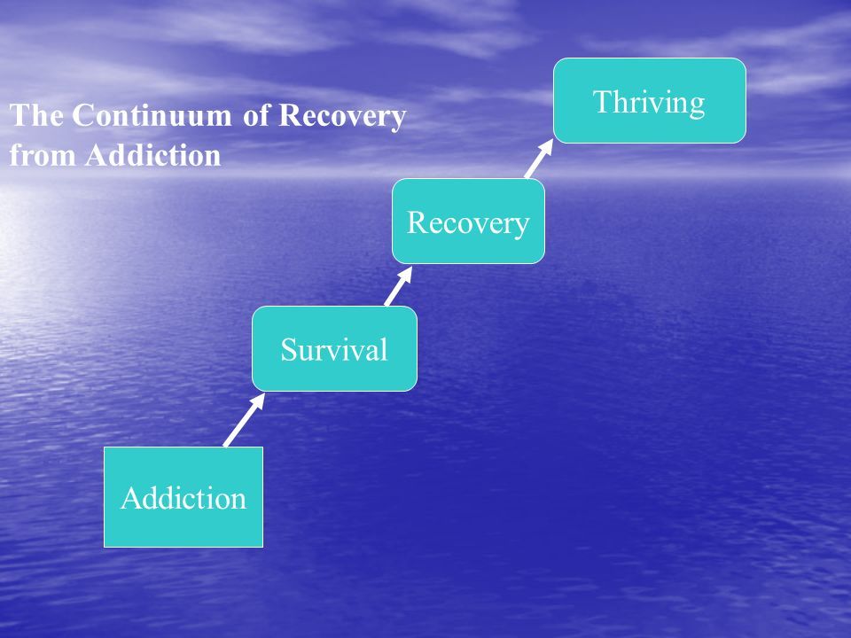 The Continuum of Recovery from Addiction Survival Recovery Thriving Addiction