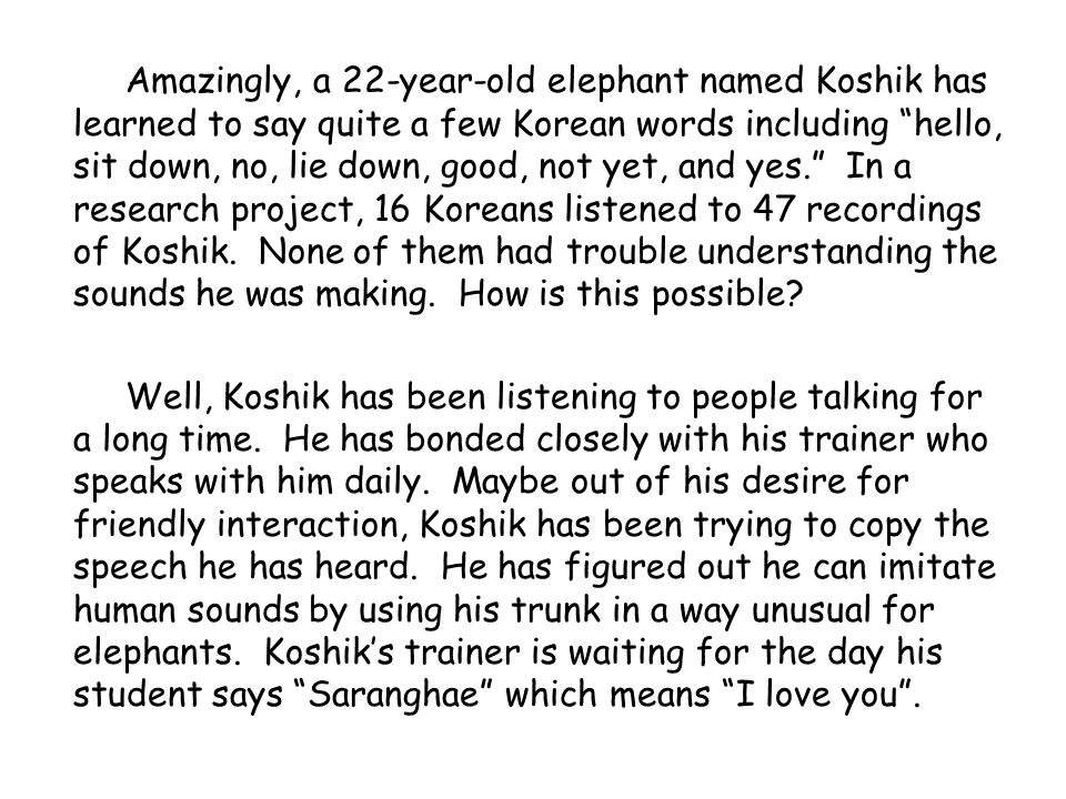 Amazingly, a 22-year-old elephant named Koshik has learned to say quite a few Korean words including hello, sit down, no, lie down, good, not yet, and yes.