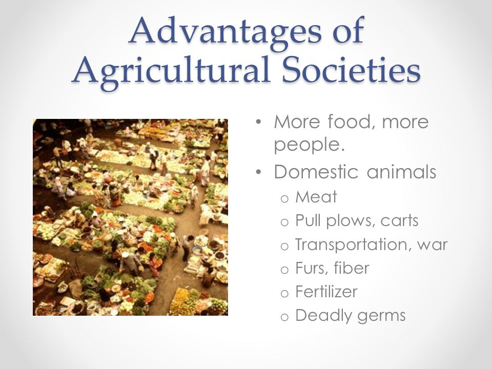 Advantages of Agricultural Societies More food, more people. Domestic animals o Meat o Pull plows, carts o Transportation, war o Furs, fiber o Fertili