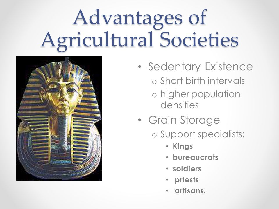 Advantages of Agricultural Societies Sedentary Existence o Short birth intervals o higher population densities Grain Storage o Support specialists: Ki