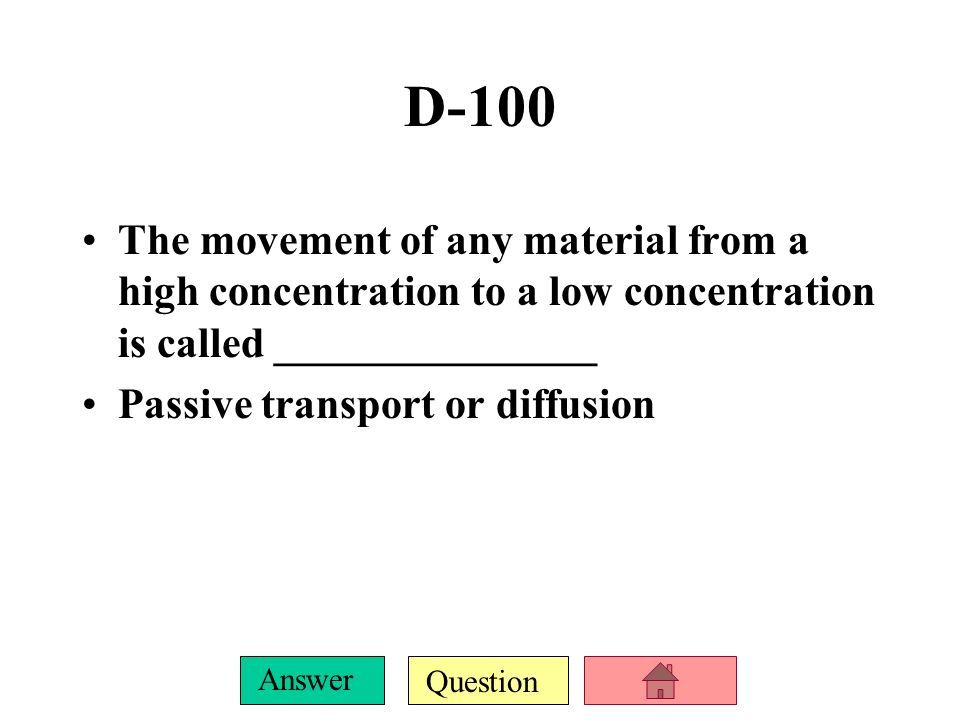 Question Answer C-500 What are 2 differences between animal and plant cells.