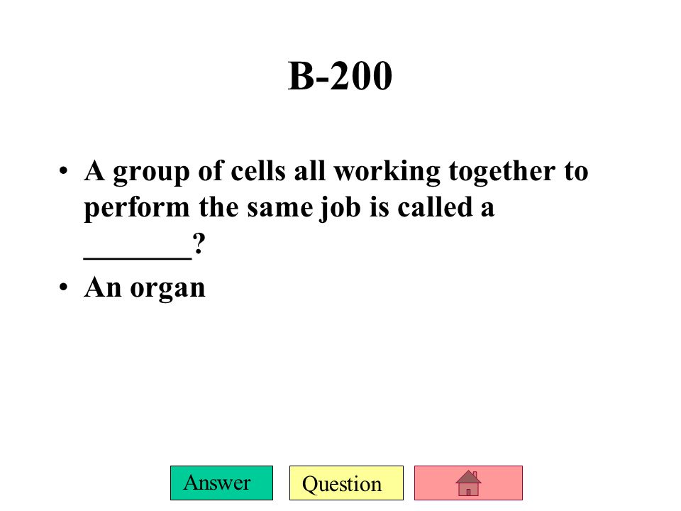 Question Answer What are all living things made up of Cells B-100