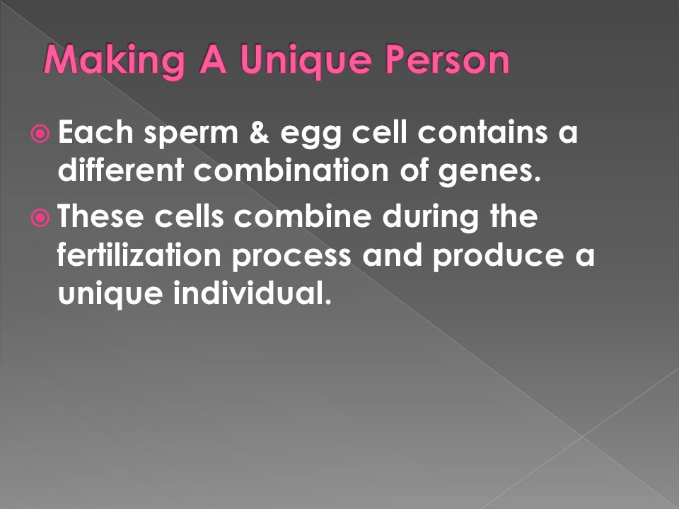 Each sperm & egg cell contains a different combination of genes. These cells combine during the fertilization process and produce a unique individual.