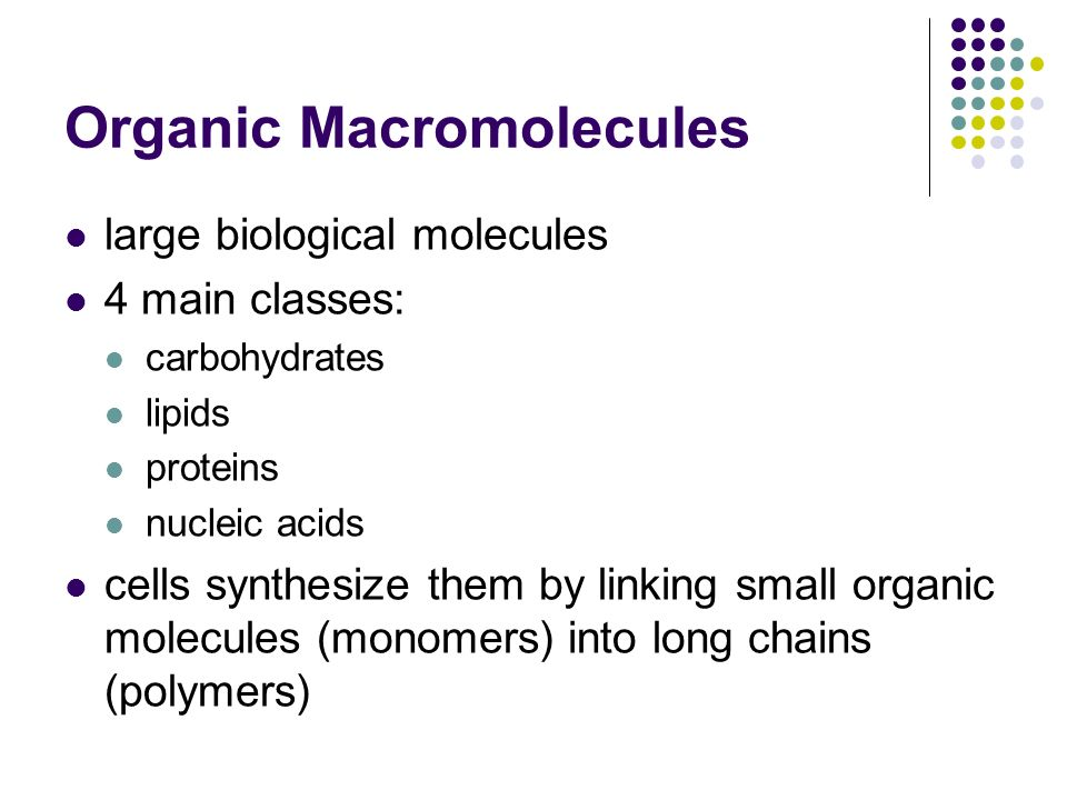 Organic Macromolecules large biological molecules 4 main classes: carbohydrates lipids proteins nucleic acids cells synthesize them by linking small o