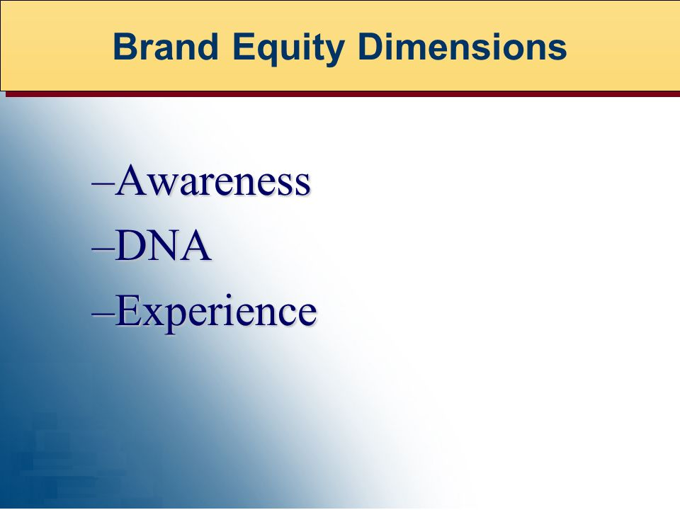 –Awareness –DNA –Experience Brand Equity Dimensions