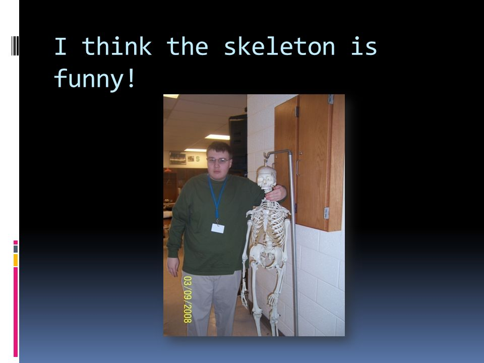 I think the skeleton is funny!