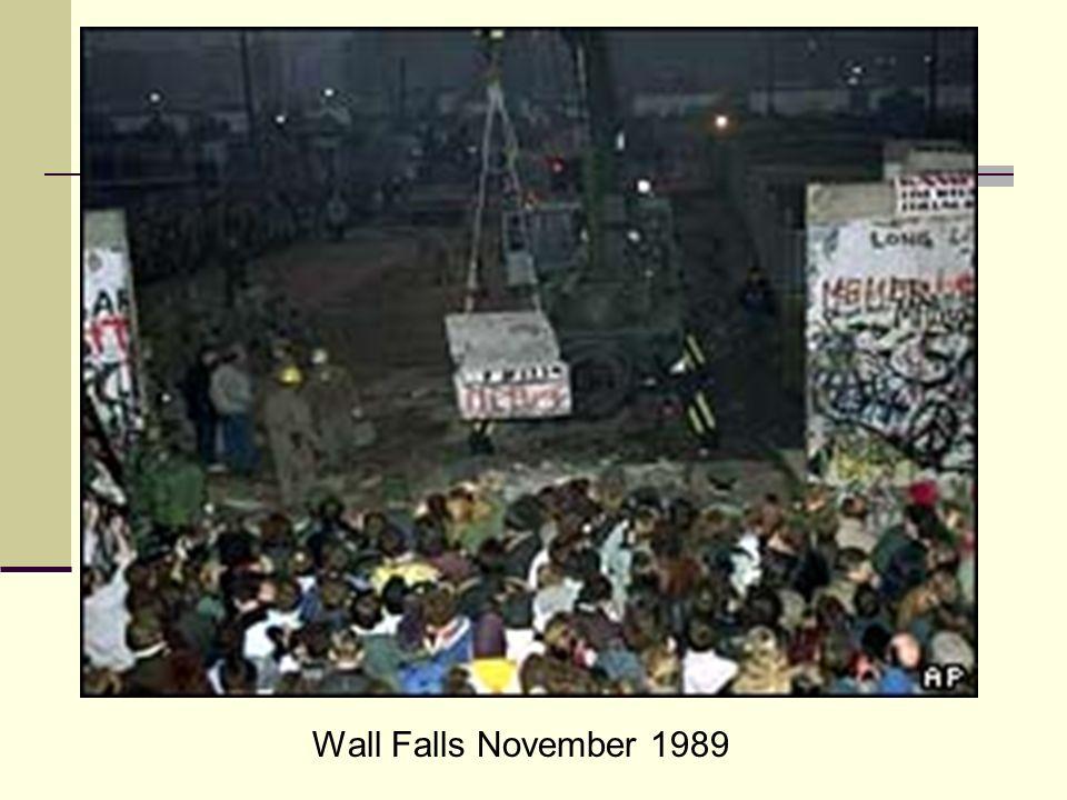 Wall Falls November 1989