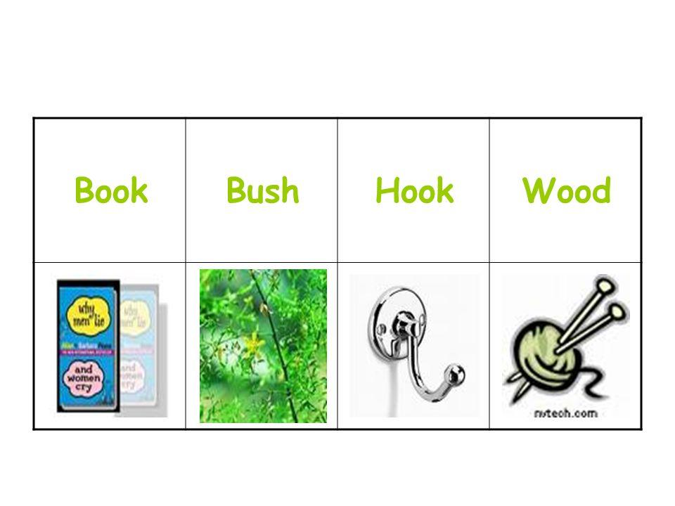 WoodHookBushBook