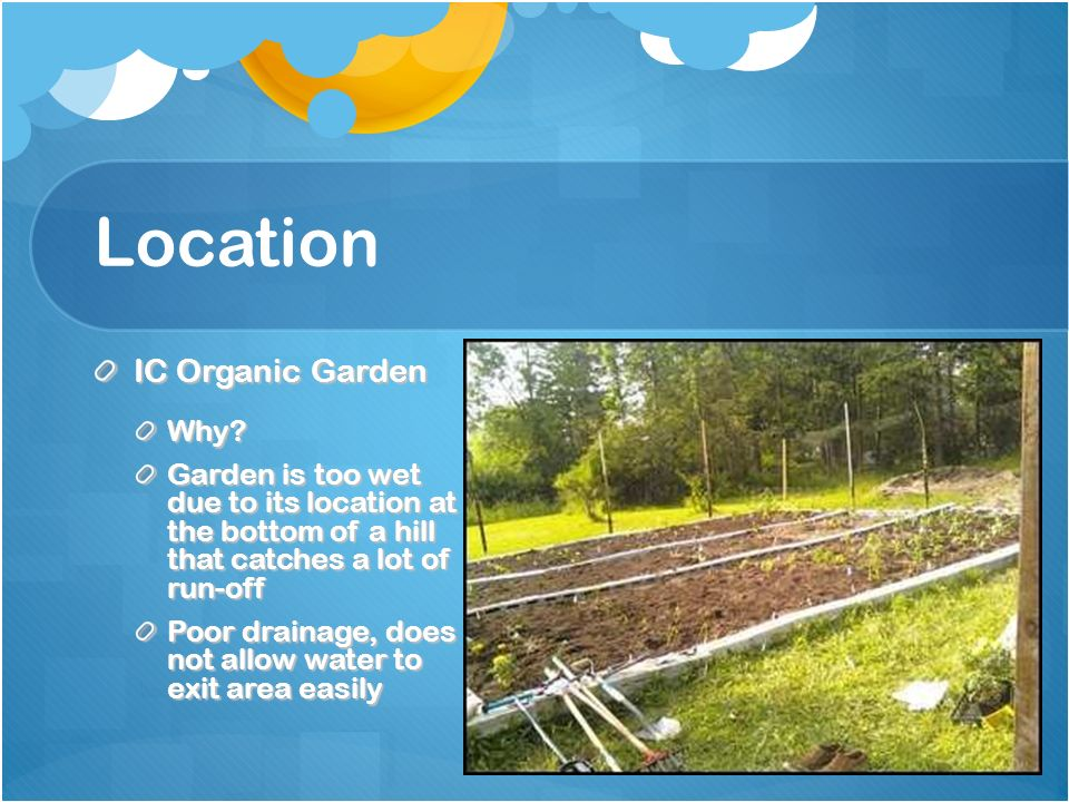Location IC Organic Garden Why? Garden is too wet due to its location at the bottom of a hill that catches a lot of run-off Poor drainage, does not al