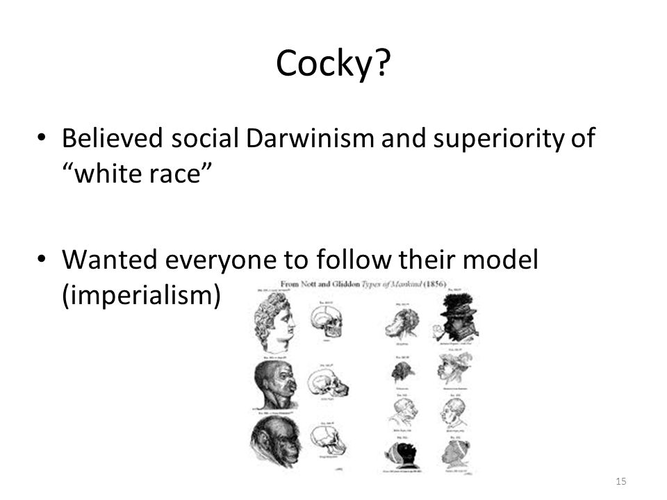 Cocky? Believed social Darwinism and superiority ofwhite race Wanted everyone to follow their model (imperialism) 15
