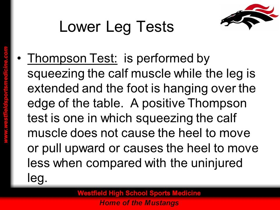 Lower Leg Tests Thompson Test: is performed by squeezing the calf muscle while the leg is extended and the foot is hanging over the edge of the table.