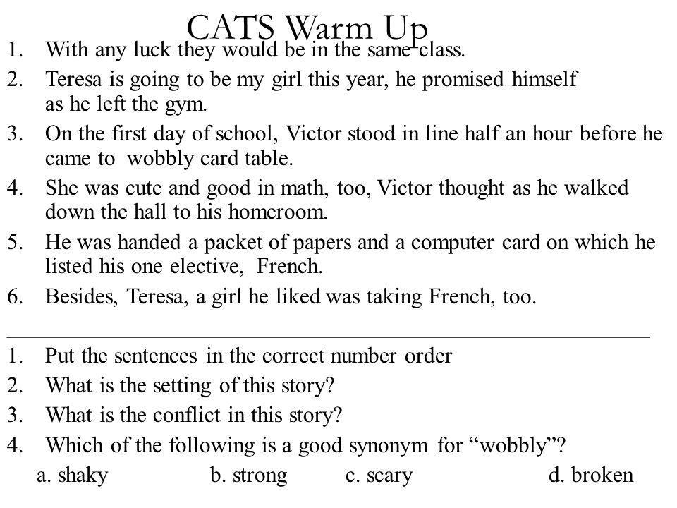 CATS Warm Up 1.With any luck they would be in the same class. 2.Teresa is going to be my girl this year, he promised himself as he left the gym. 3.On