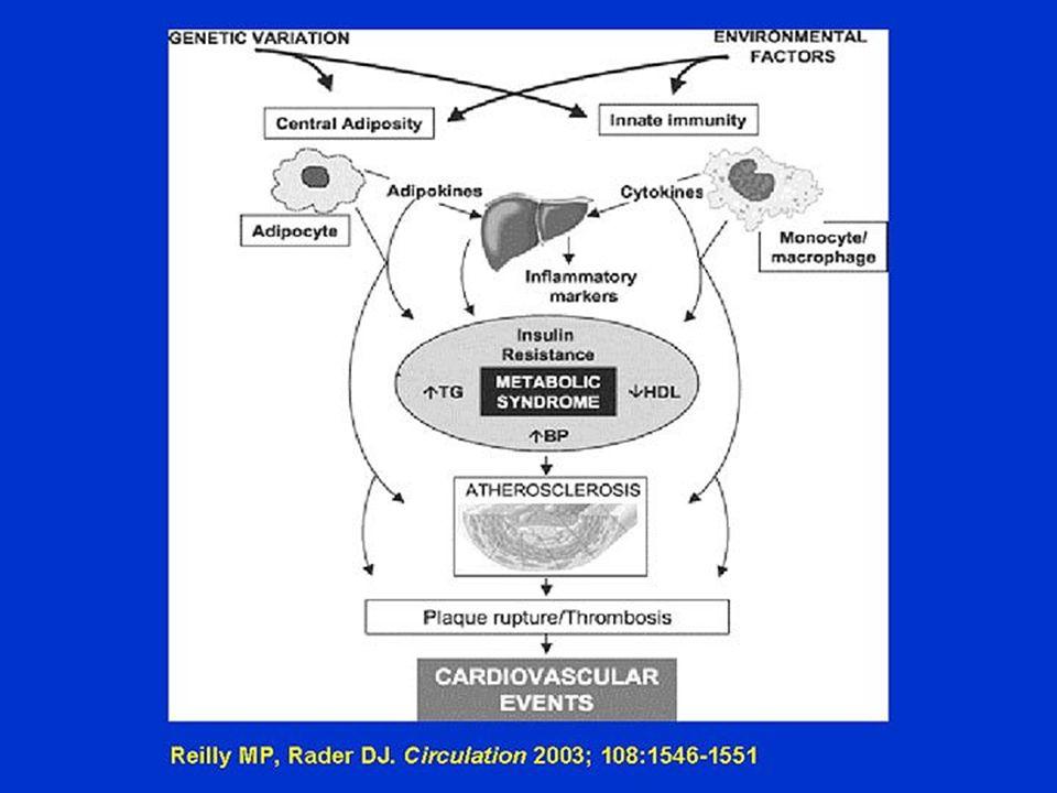 Cartoon of mechanism of disease