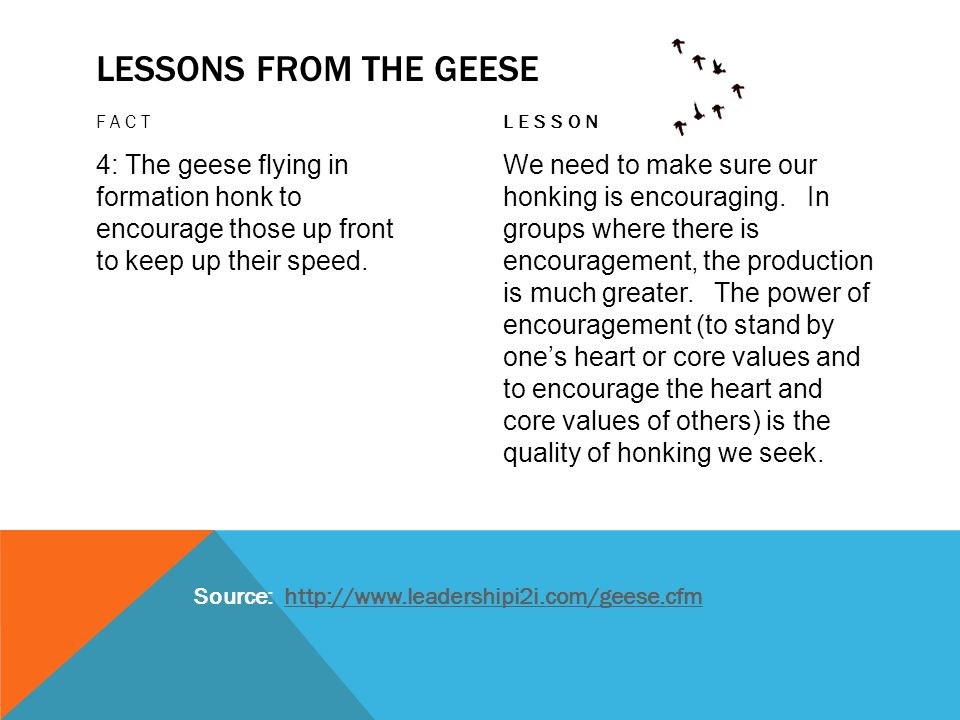 LESSONS FROM THE GEESE FACT 4: The geese flying in formation honk to encourage those up front to keep up their speed. LESSON We need to make sure our