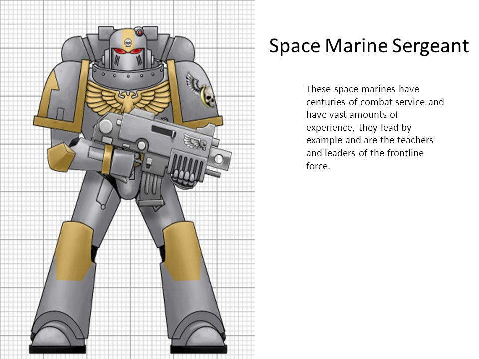 Space Marine Sergeant These space marines have centuries of combat service and have vast amounts of experience, they lead by example and are the teach