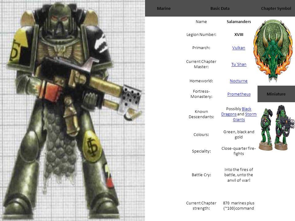 MarineBasic DataChapter Symbol NameSalamanders Legion Number:XVIII Primarch:Vulkan Current Chapter Master: Tu`Shan Homeworld:Nocturne Fortress- Monast
