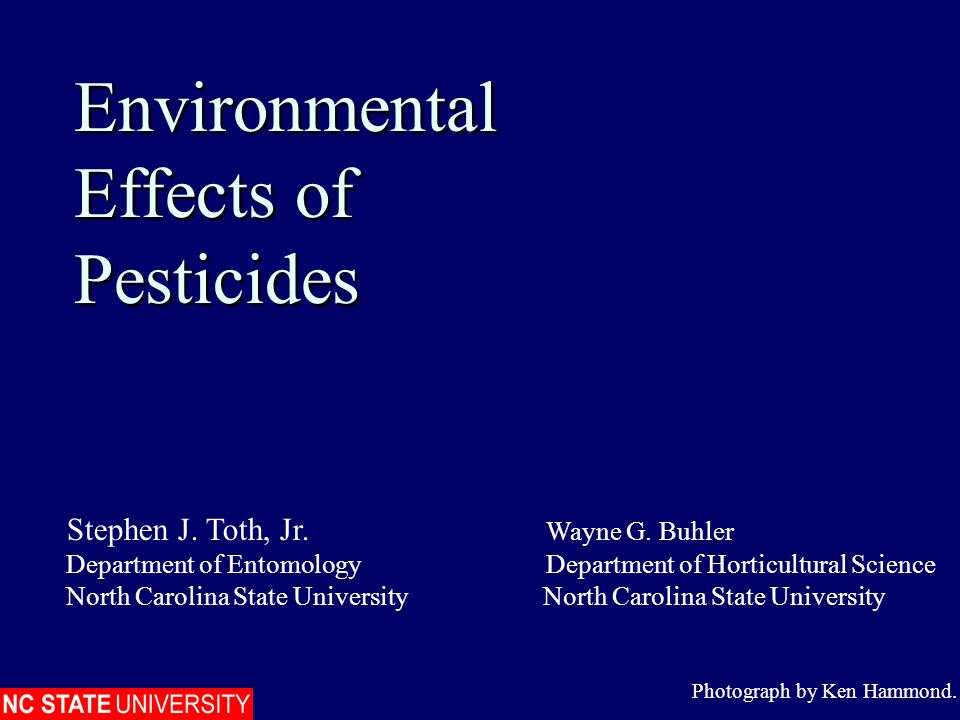 Environmental Effects of Pesticides Environmental Effects of Pesticides Photograph by Ken Hammond. Stephen J. Toth, Jr. Wayne G. Buhler Department of