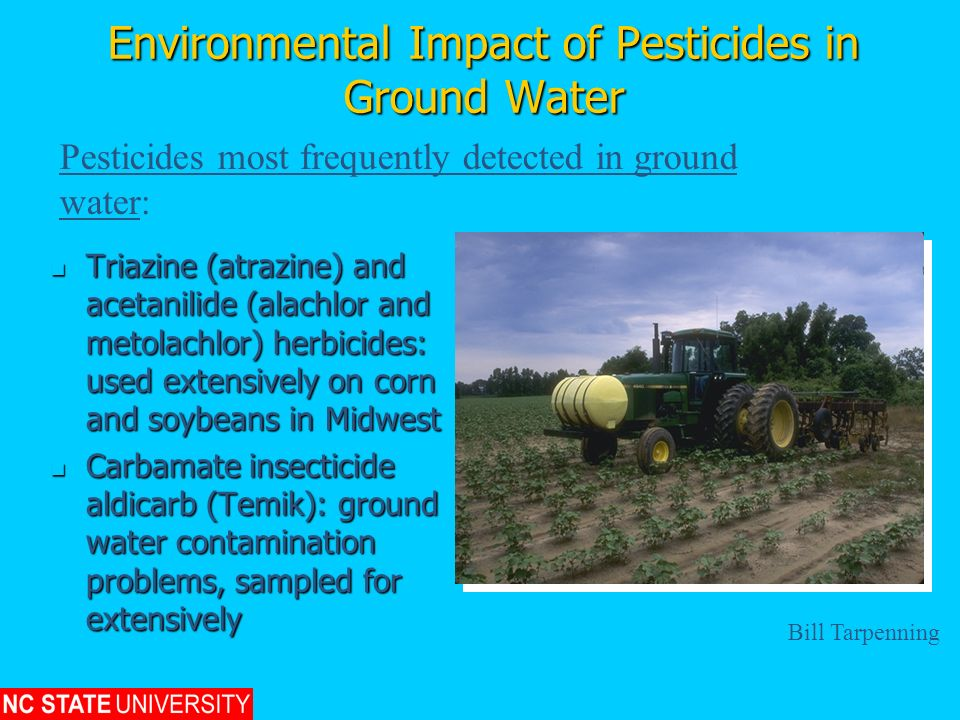 Environmental Impact of Pesticides in Ground Water Triazine (atrazine) and acetanilide (alachlor and metolachlor) herbicides: used extensively on corn
