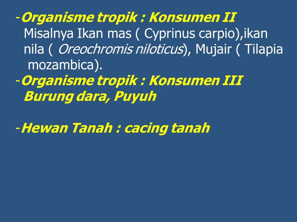 -Organisme tropik : Konsumen II Misalnya Ikan mas ( Cyprinus carpio),ikan nila ( Oreochromis niloticus), Mujair ( Tilapia mozambica). -Organisme tropi