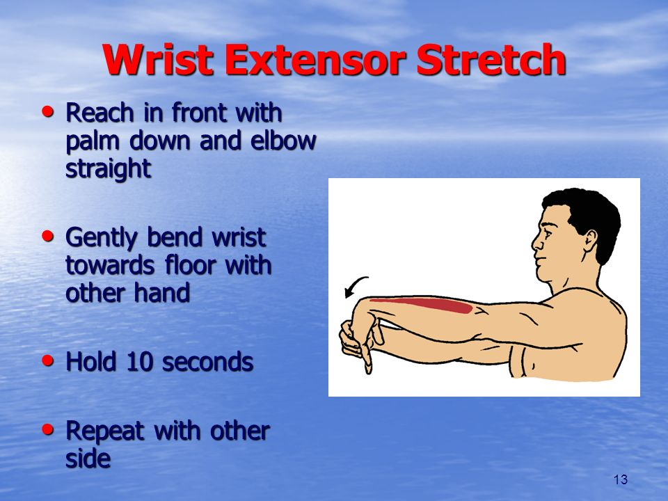 13 Wrist Extensor Stretch Reach in front with palm down and elbow straight Reach in front with palm down and elbow straight Gently bend wrist towards