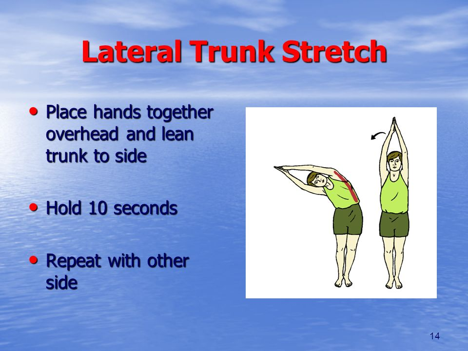 14 Lateral Trunk Stretch Place hands together overhead and lean trunk to side Place hands together overhead and lean trunk to side Hold 10 seconds Hol