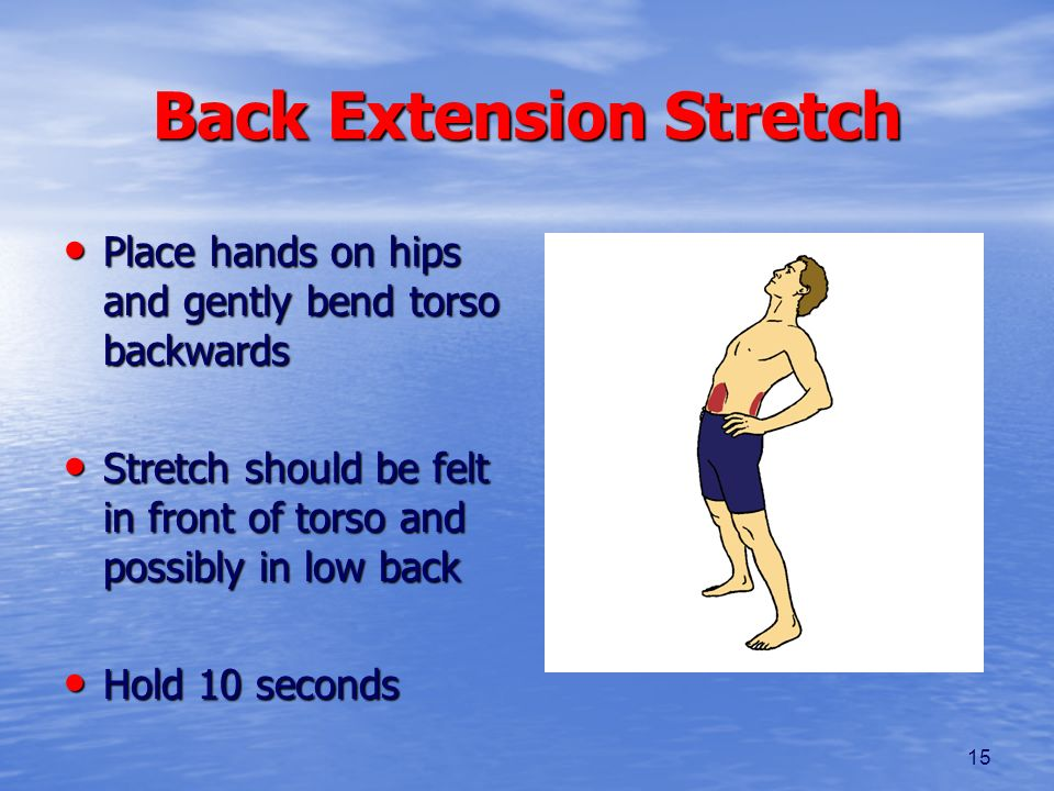 15 Back Extension Stretch Place hands on hips and gently bend torso backwards Place hands on hips and gently bend torso backwards Stretch should be fe
