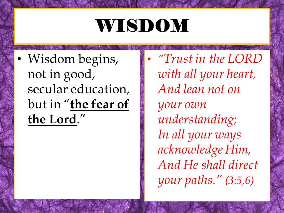 G REAT L ESSONS F ROM P ROVERBS One of the main subjects in Proverbs is the contrast between the wise and foolish.