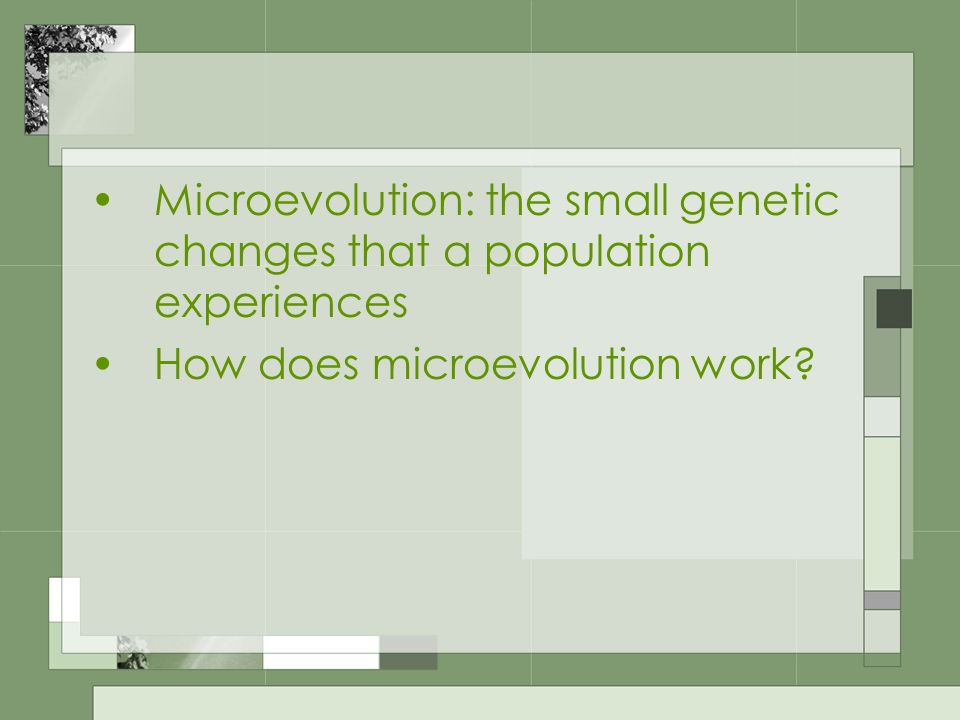 Microevolution: the small genetic changes that a population experiences How does microevolution work?
