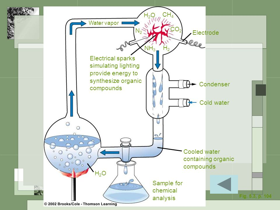 Electrical sparks simulating lighting provide energy to synthesize organic compounds Sample for chemical analysis Cooled water containing organic comp