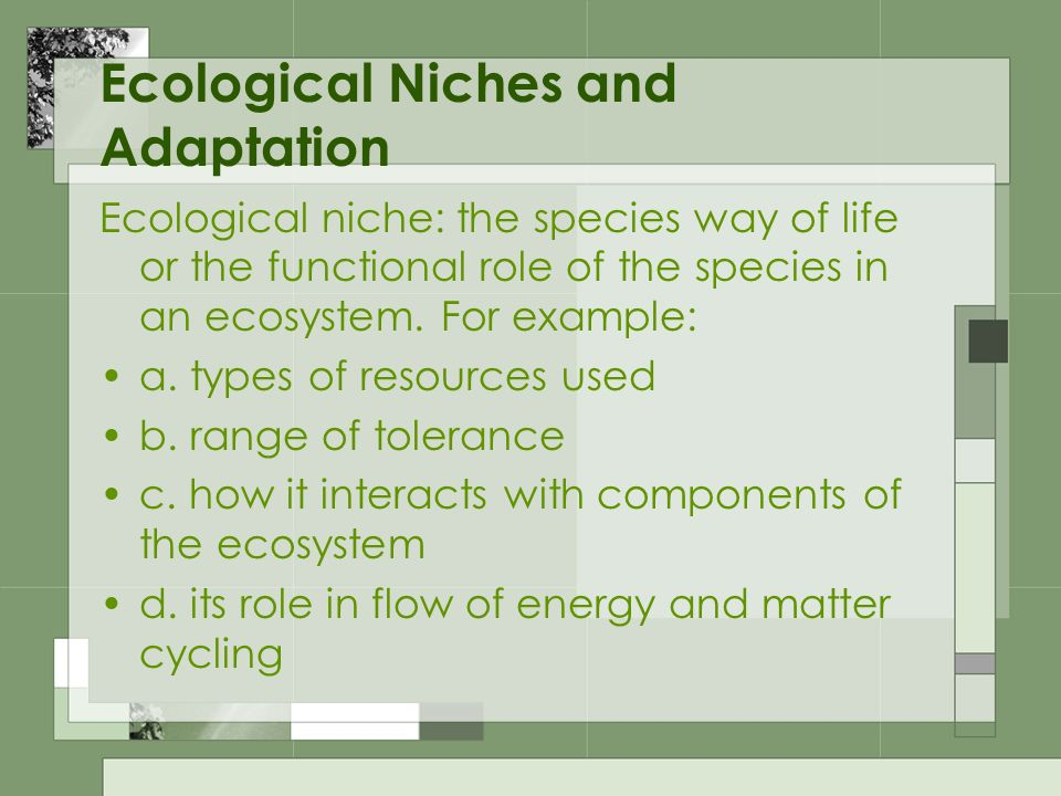 Ecological Niches and Adaptation Ecological niche: the species way of life or the functional role of the species in an ecosystem. For example: a. type