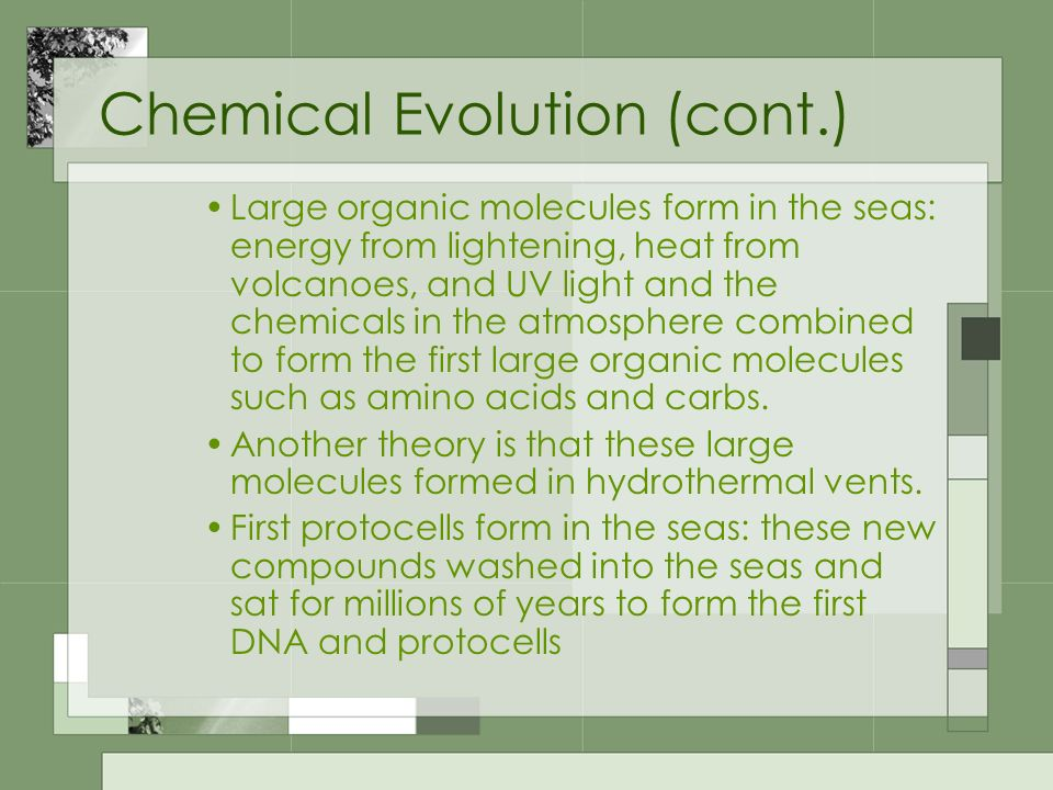 Chemical Evolution (cont.) Large organic molecules form in the seas: energy from lightening, heat from volcanoes, and UV light and the chemicals in th