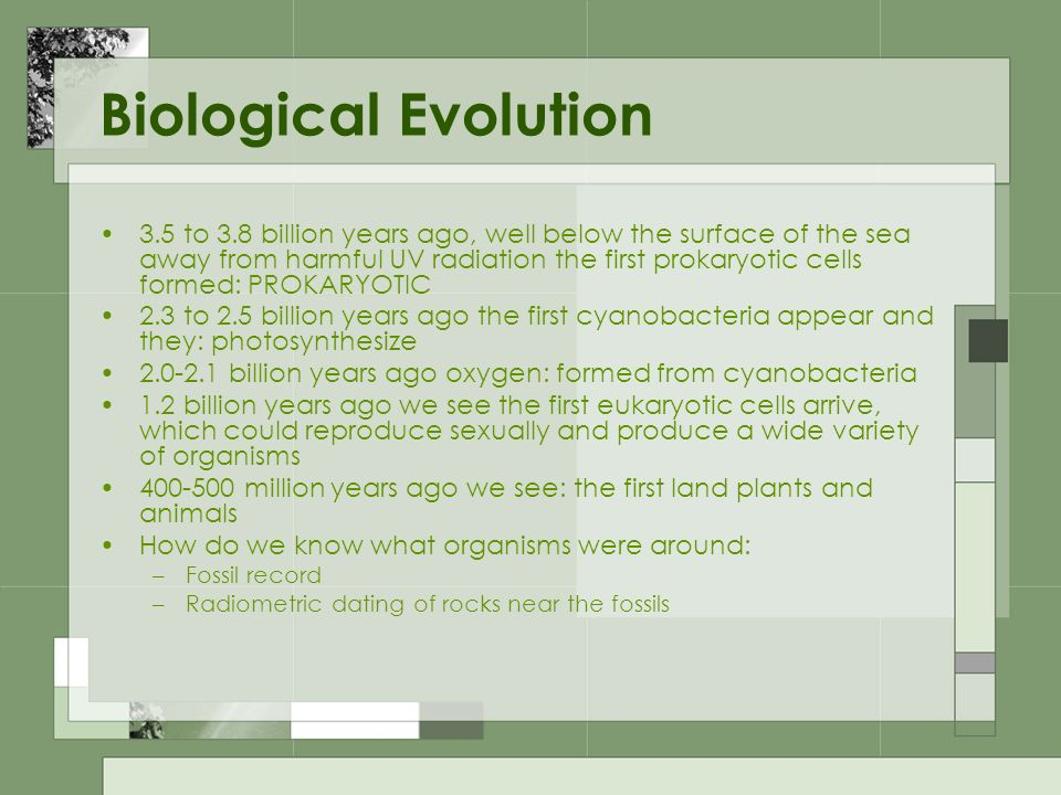 Biological Evolution 3.5 to 3.8 billion years ago, well below the surface of the sea away from harmful UV radiation the first prokaryotic cells formed