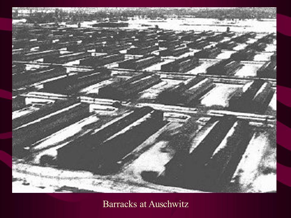 Barracks at Auschwitz