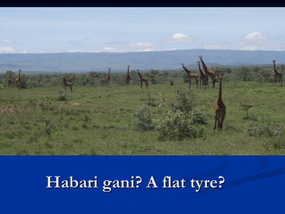 Habari gani? A flat tyre?