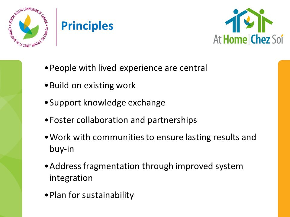 Principles People with lived experience are central Build on existing work Support knowledge exchange Foster collaboration and partnerships Work with communities to ensure lasting results and buy-in Address fragmentation through improved system integration Plan for sustainability