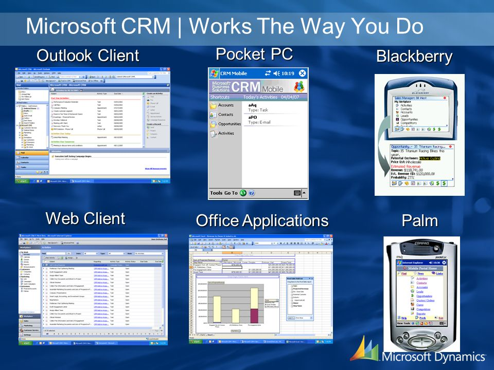 Outlook Client Web Client Pocket PC Office Applications Blackberry Palm Microsoft CRM | Works The Way You Do