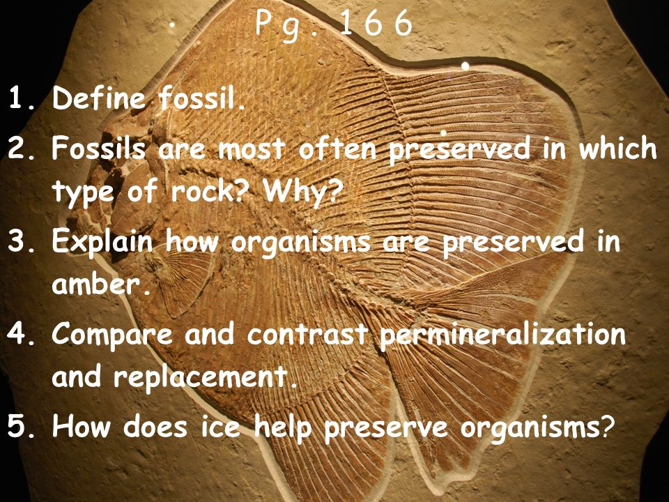 1.Define fossil. 2.Fossils are most often preserved in which type of rock? Why? 3.Explain how organisms are preserved in amber. 4.Compare and contrast