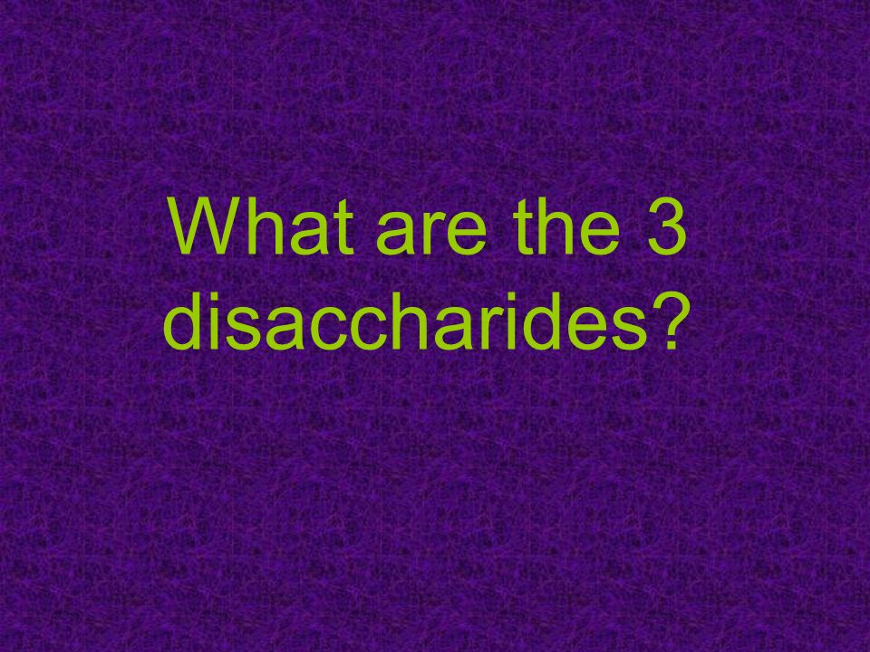 What are the 3 disaccharides?