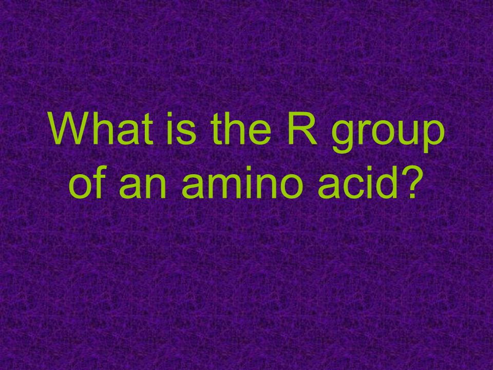 What is the R group of an amino acid?