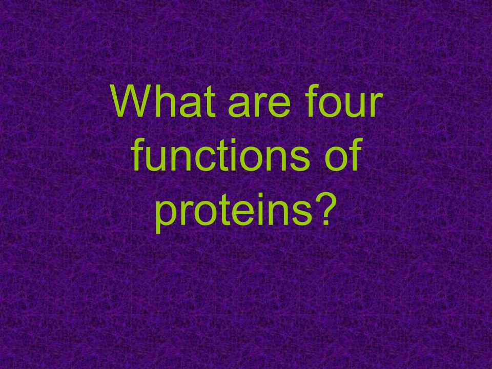 What are four functions of proteins?