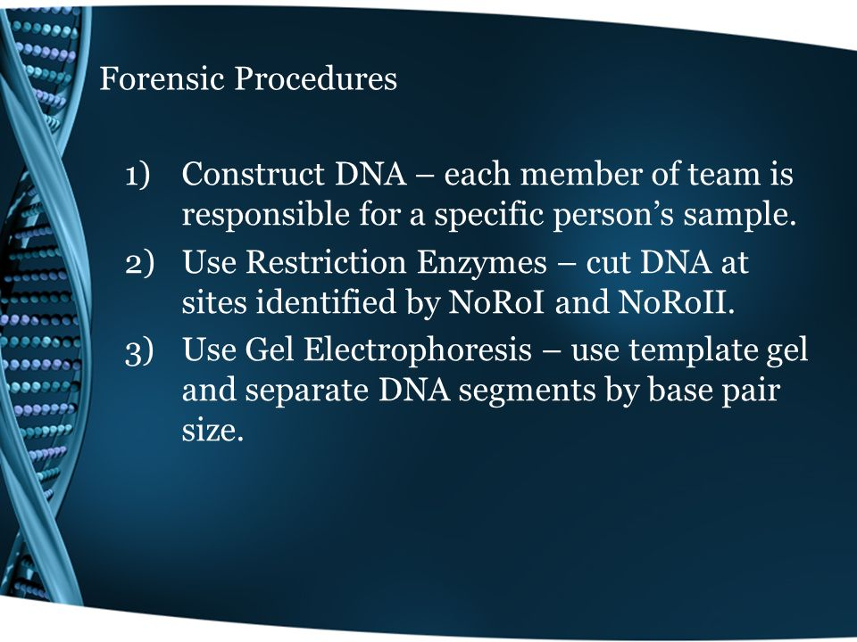 Forensic Procedures 4)Denature DNA – Separate double strands into single strands.
