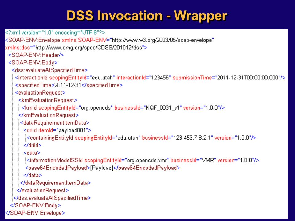 ©2011, Kensaku Kawamoto DSS Invocation - Wrapper
