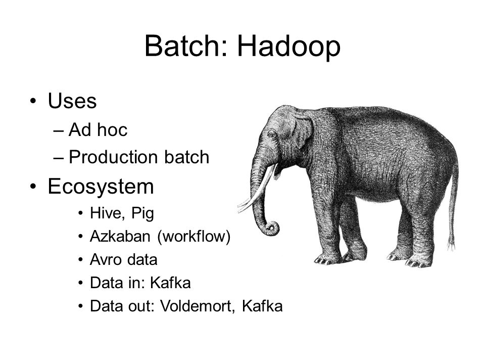 Batch: Hadoop Uses –Ad hoc –Production batch Ecosystem Hive, Pig Azkaban (workflow) Avro data Data in: Kafka Data out: Voldemort, Kafka