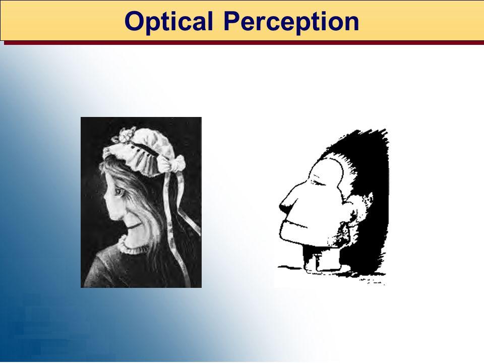 Optical Perception